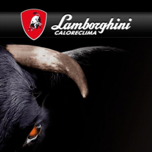 Assistenza caldaie Lamborghini Roma